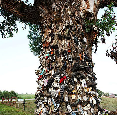 Shoe Tree image